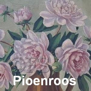 pioenroos